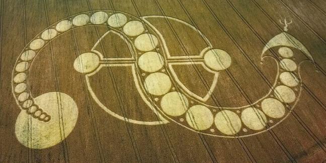 kundalini snake cropcircle (cropped)