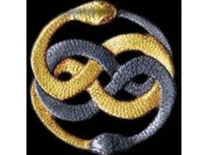 kundalini snakes (4x3)