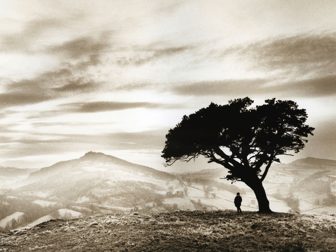 lonely tree welsh hills (4x3)