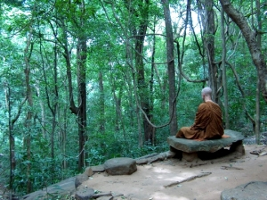 samadhi in forest